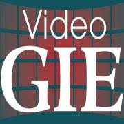 Video GIE logo